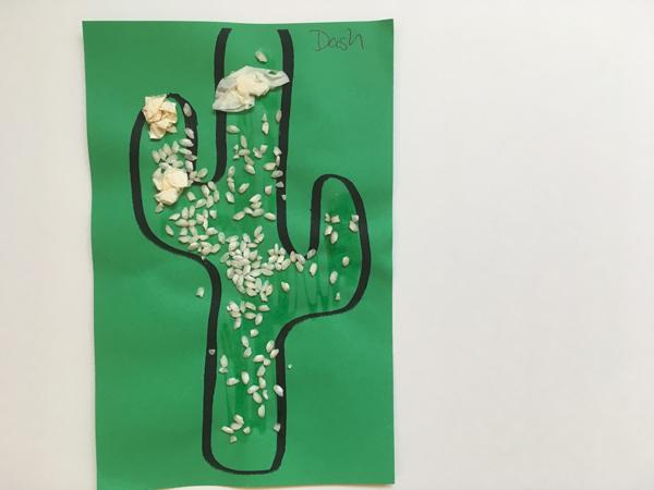 1706_cactus