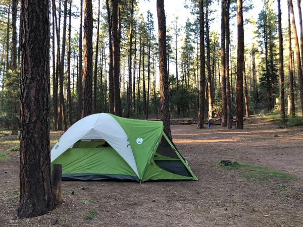 1809_tent