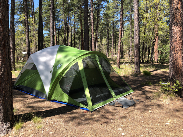 My packing list for family camping trips | RISING*SHINING