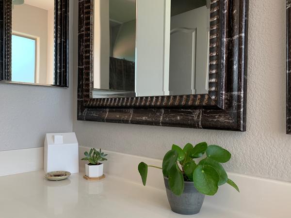 200328_plants_bathroomplants